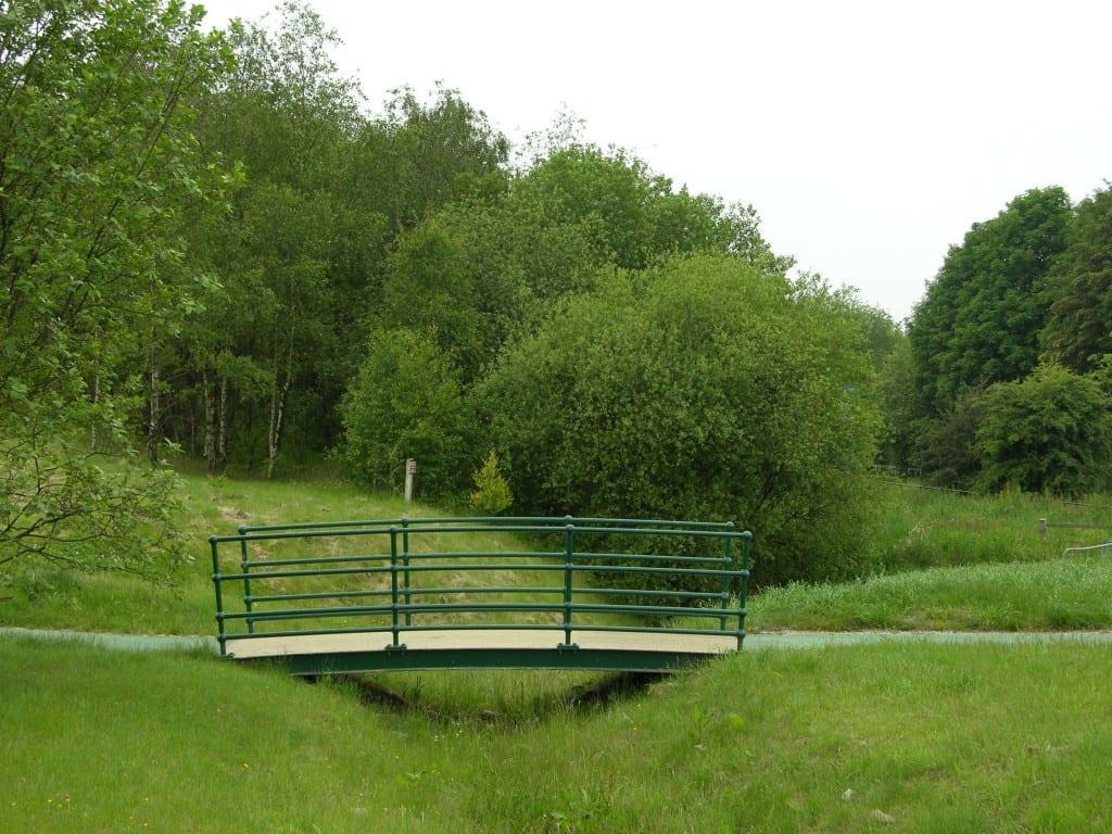 Ashton's Field