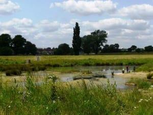 Beam Parklands is a Green Flag park