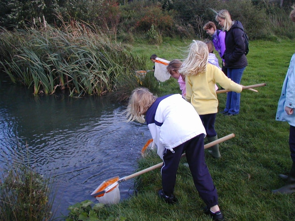 Pond dipping at Davy Down