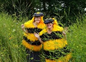 Bees at Countess of Chester