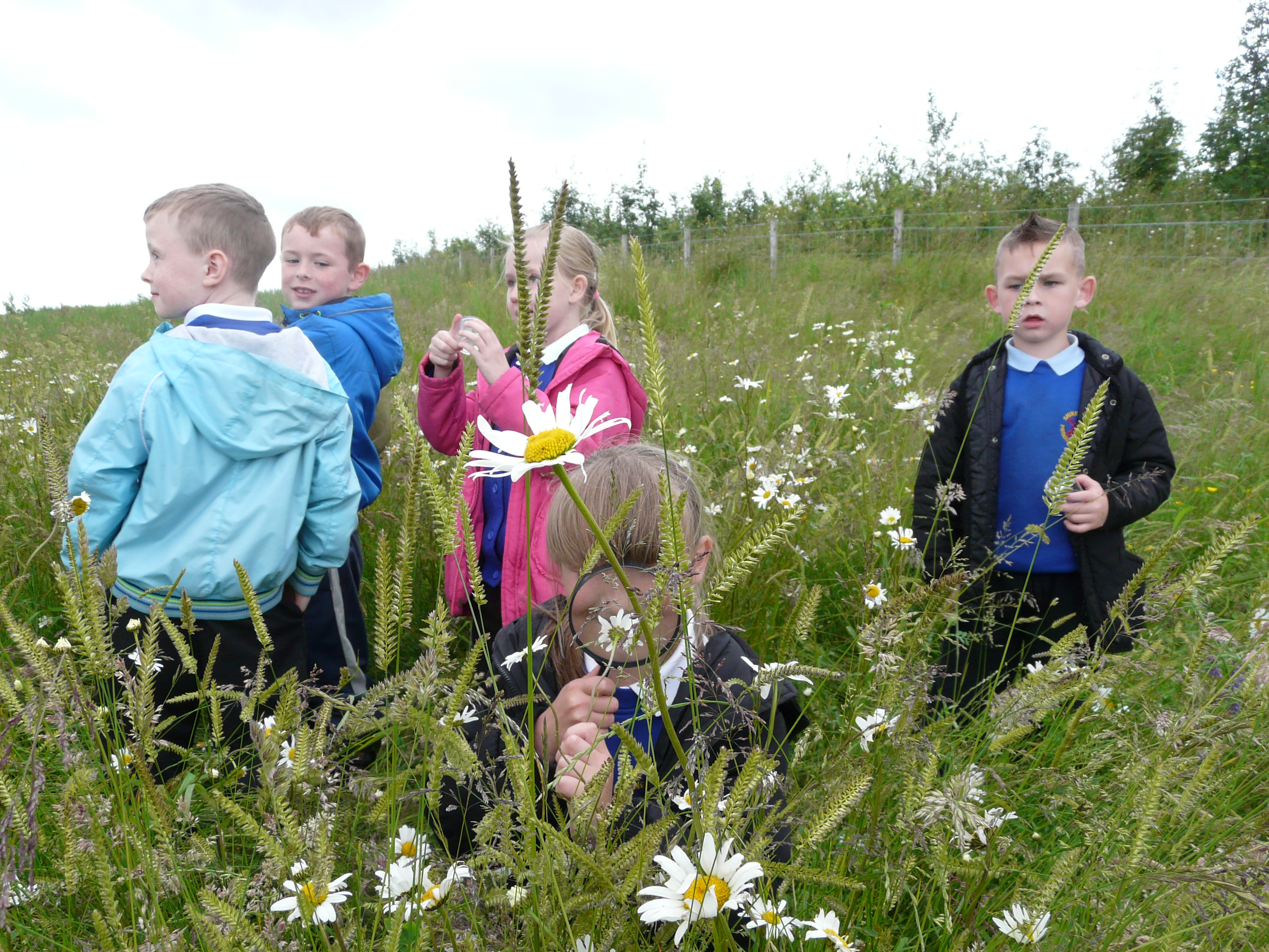 Blog: Importance of outdoor learning