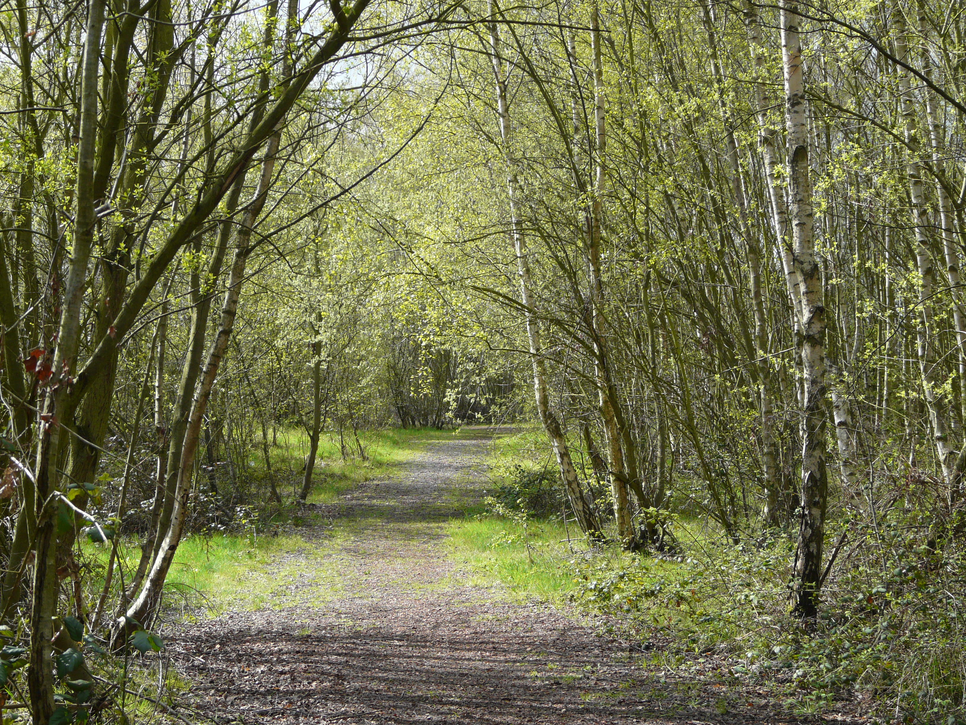 country fryston trails path trust land