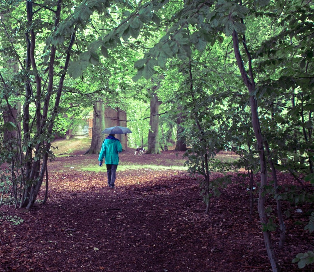Man walking through Wellesley Woodlands in the rain. Copyright Elle Halley