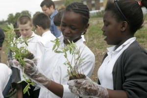 Children learning environmental skills at Land Trust sites