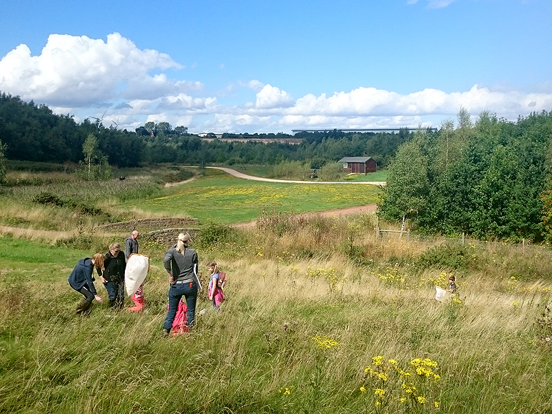 Volunteers running environmental education activities on one of The Land Trust's sites