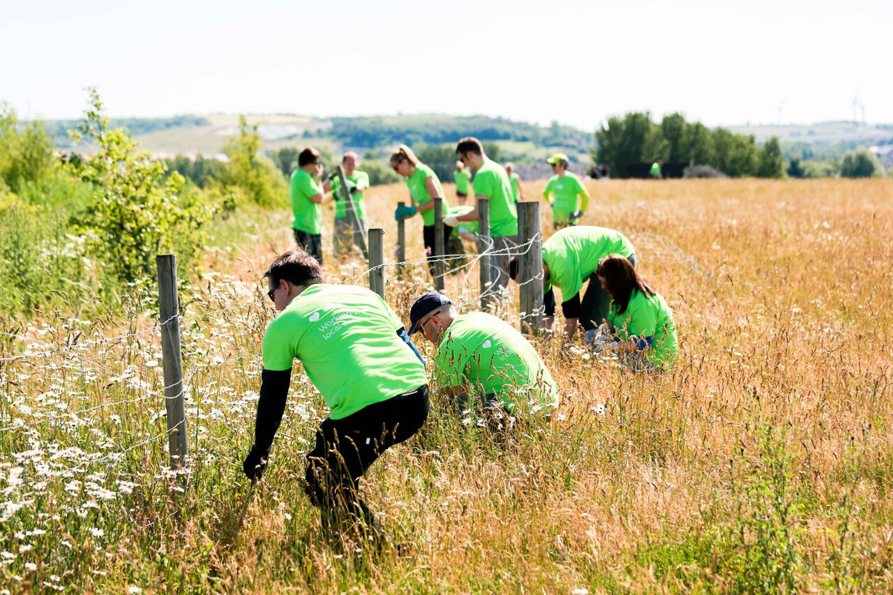 Local business contributes to the regeneration of green infrastructure as a group of corporate volunteers build a fence on The Land Trust's site.