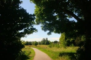 New Green Gym launched in Countess of Chester Country Park