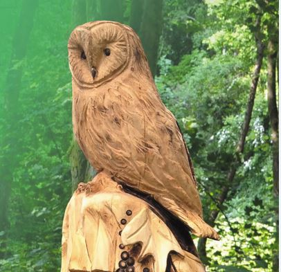 Owl wood carving the land trust