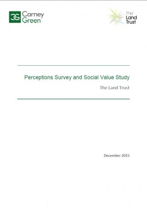 Perceptions Survey and Social Value Study December 2015