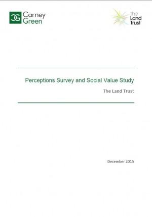 Perceptions Survey and Social Value Study December 2015