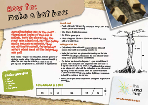 How to make a Bat Box