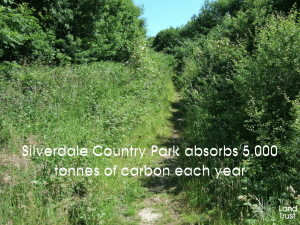 Silverdale Country Park absorbs 5,000 tonnes of carbon annually