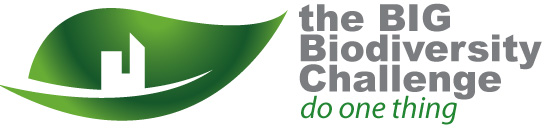 CIRIA Big Biodiversity Challenge