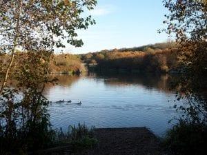 Langdon Lake and Meadows - Lucy Sawyer-Boyd