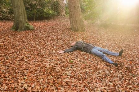Enjoying Wellesley Woodlands in autumn (c) Andy McKenna
