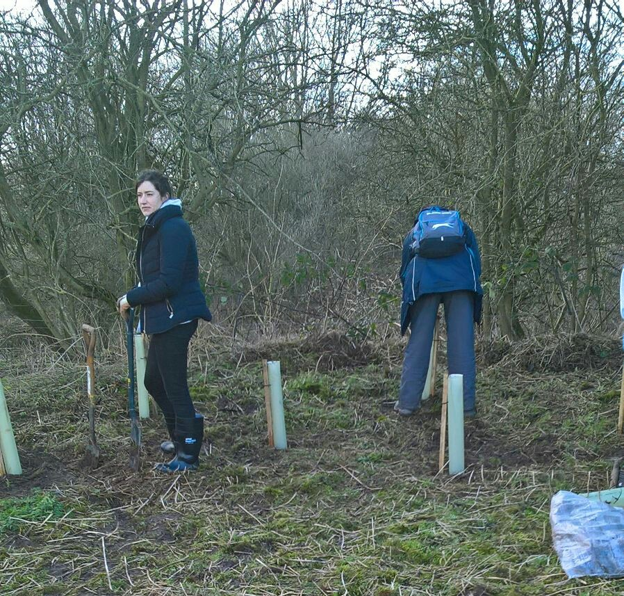 Tree planting at Countess of Chester Country Park - Ancora House