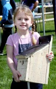 Bird boxes at Beaulieu