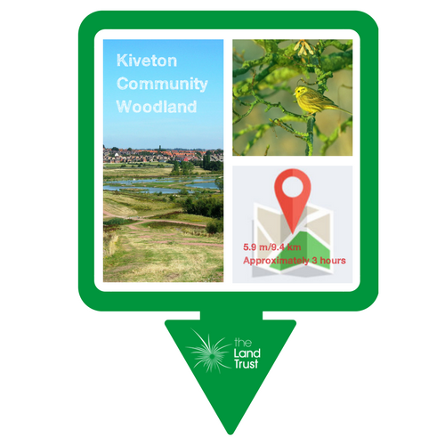 Web copy of Kiveton Community Woodland walk