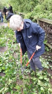 Carolyn Hassall volunteering at Greenwich Peninsula Ecology Park