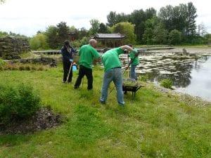 Green Angels volunteers get stuck in