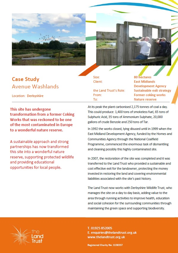 Avenue Washlands case study