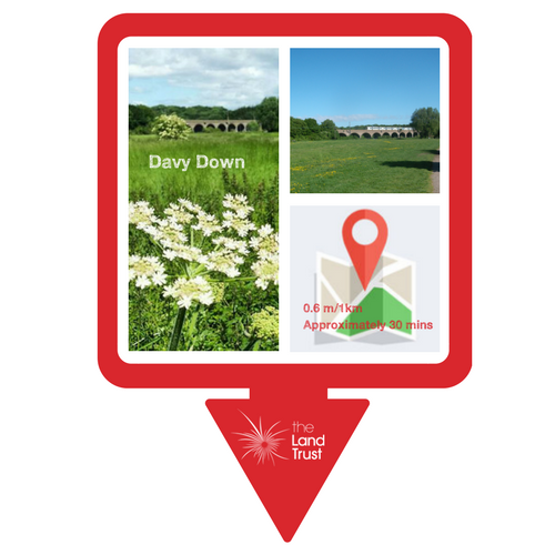 Walking route - Health Walk at Davy Down