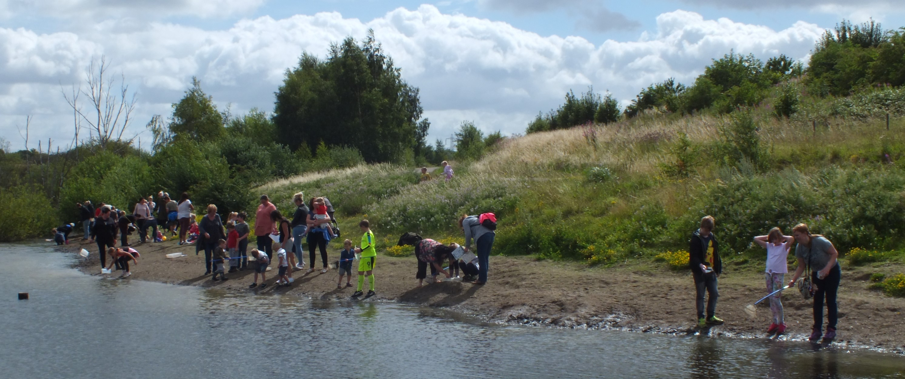 Pond dipping at Rabbit Ings Country Park