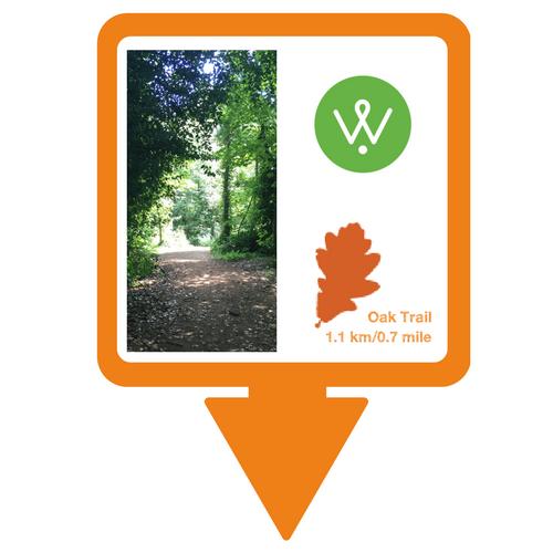 Wellesley Woodlands Oak Trail