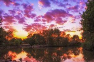Whittle Hall Duck Pond - David Clark