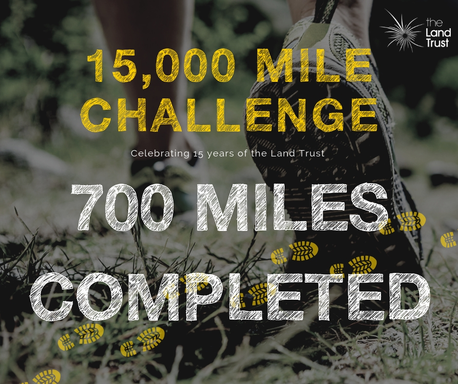 15,000 mile challenge
