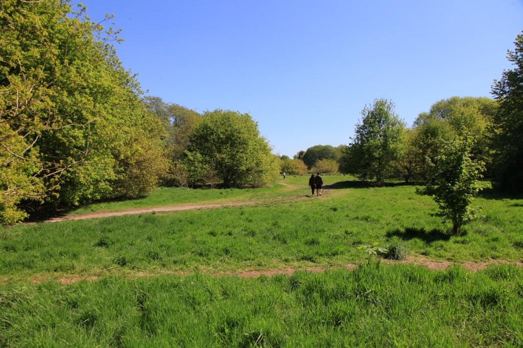 MIrrlees Park